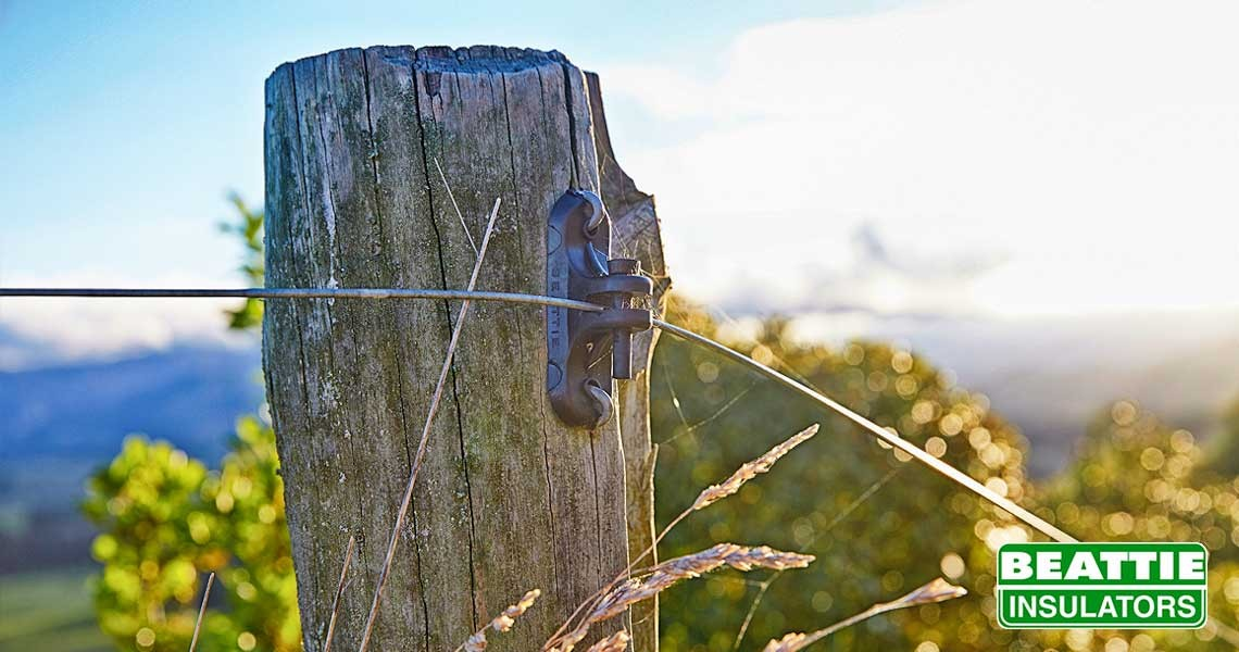 Wooden Post Insulator (No11) on old post